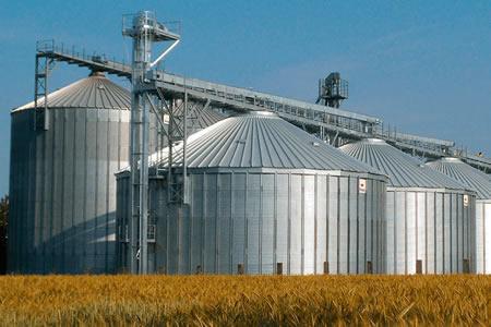Empresa do grupo AP Agrícola automatiza processo utilizando produtos da Série Nexto