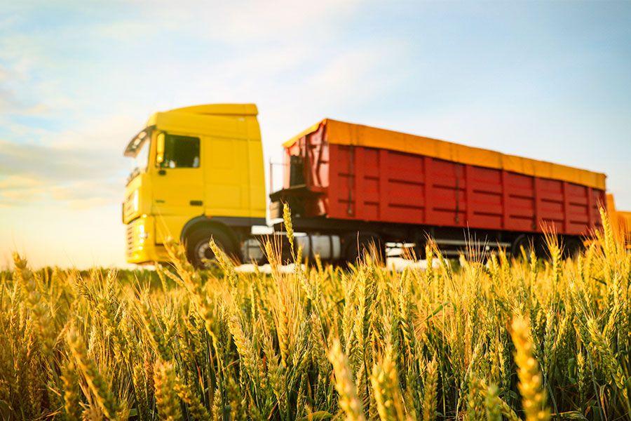 Empresa de transporte utiliza CLP Xpress para automatizar terminal de grãos