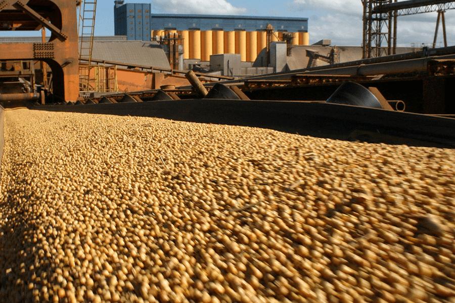 Posto de recebimento de processadora de soja é modernizado com tecnologia Altus